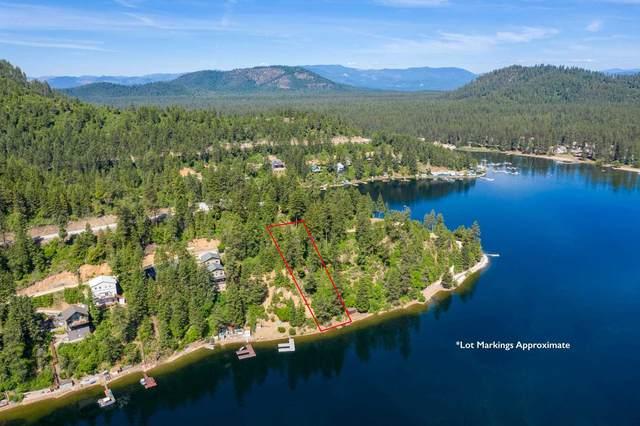 3921 E Pine Bay Rd, Loon Lake, WA 99148 (#202115974) :: Freedom Real Estate Group