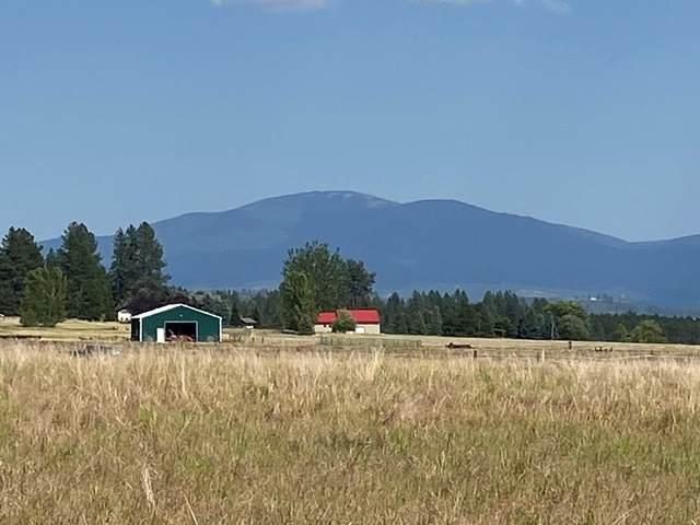 xx E Westmoreland Rd, Spokane, WA 99006 (#202118516) :: Inland NW Group