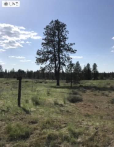NHN Rock Lake Rd, Cheney, WA 99004 (#202119036) :: The Spokane Home Guy Group