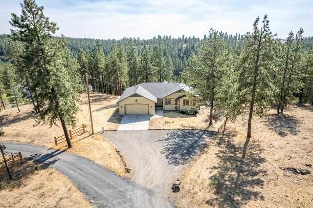 2418 N Chris Ln, Medical Lake, WA 99022 (#202119247) :: Trends Real Estate