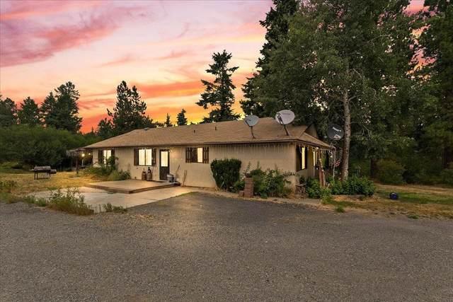 22402 E Stringham Rd, Rockford, WA 99030 (#202120918) :: The Spokane Home Guy Group