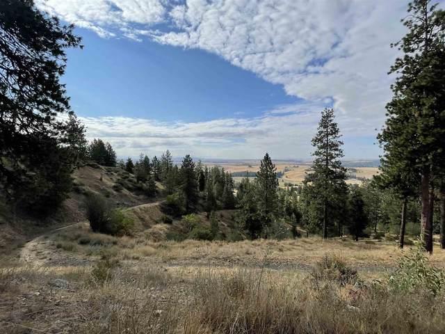 XXX E Big Rock Rd, Spokane, WA 99223 (#202121370) :: The Spokane Home Guy Group