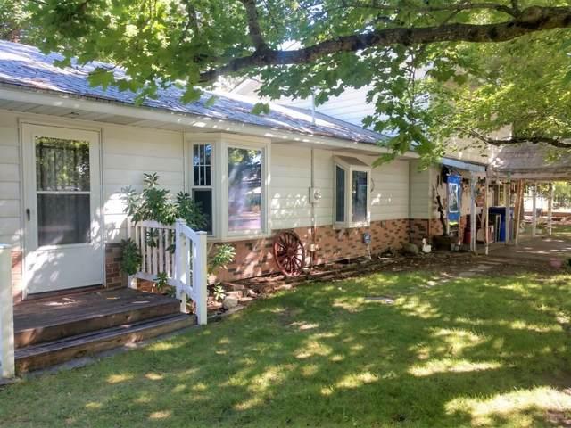 107 S Park Ave, Deer Park, WA 99006 (#202121694) :: NuKey Realty & Property Management, LLC