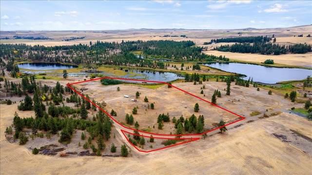 24000 W Kitt Rd, Reardan, WA 99029 (#202123201) :: The Spokane Home Guy Group
