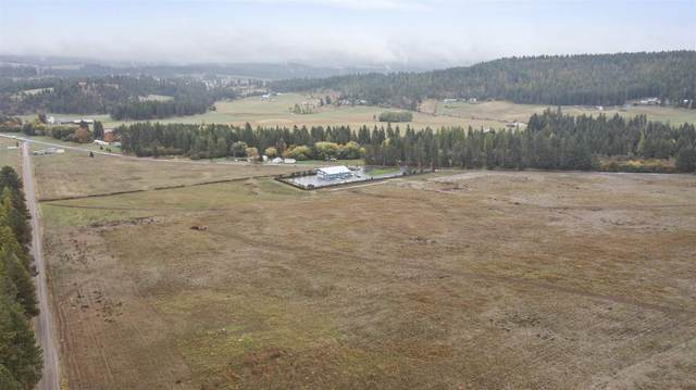xxxx Elk-Chattaroy Rd, Chattaroy, WA 99003 (#202123966) :: The Hardie Group