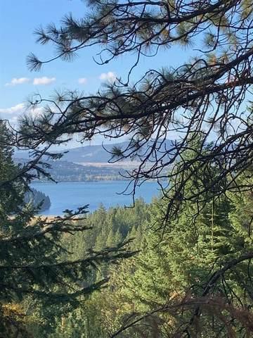 0 S Idaho Rd, Liberty Lake, WA 99019 (#202124302) :: Freedom Real Estate Group