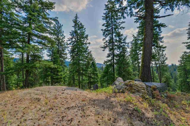 15606 E Nelson Rd, Elk, WA 99009 (#201822455) :: Northwest Professional Real Estate