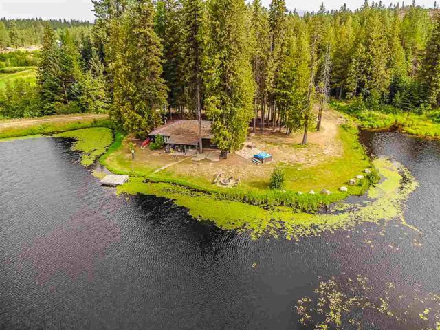 2817 Baker Lake Rd, Newport, WA 99156 (#201822877) :: Northwest Professional Real Estate