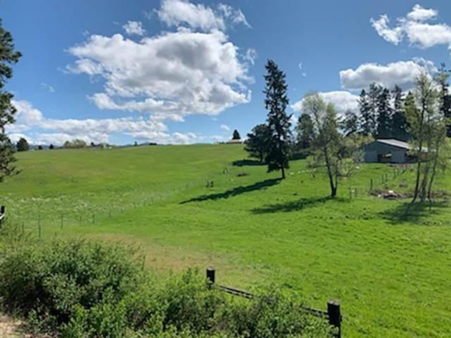 18XXX N Day Mt Spokane Rd, Mead, WA 99021 (#202012393) :: Elizabeth Boykin & Keller Williams Realty