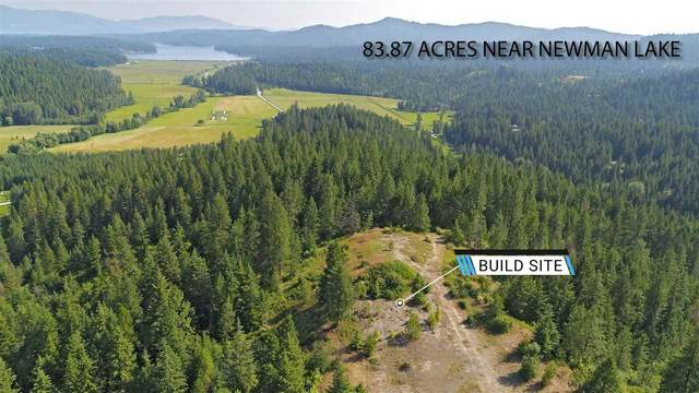 17935 N Thompson Creek Rd, Newman Lake, WA 99025 (#202017915) :: Prime Real Estate Group