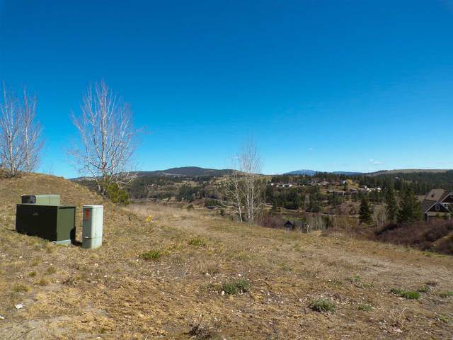 12121 S Quail Creek Ln Lot 1, Block 20, Spokane, WA 99224 (#202112147) :: The Synergy Group