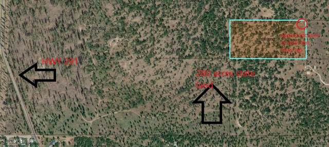 6548 Summerlin Way, Nine Mile Falls, WA 99026 (#202117640) :: Bernadette Pillar Real Estate