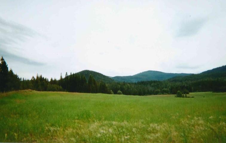 Alder Creek 1 Rd - Photo 1