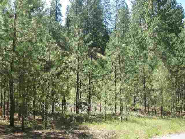 Lot 5 Palmer Rd, Nine Mile Falls, WA 99026 (#201715806) :: The Hardie Group
