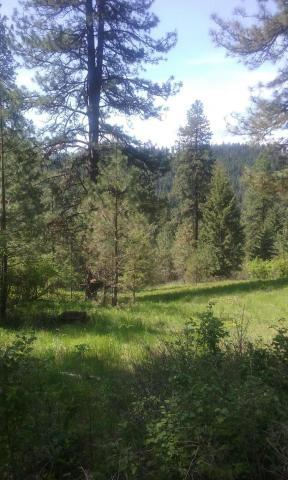 NNA E Holly Rd, Other, ID 83833 (#201724644) :: Prime Real Estate Group