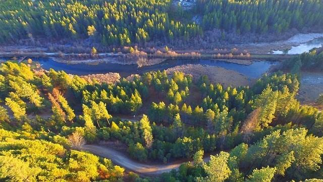 0000 Lot 14 Lower Pines Rd, Newport, WA 99156 (#201725586) :: Prime Real Estate Group