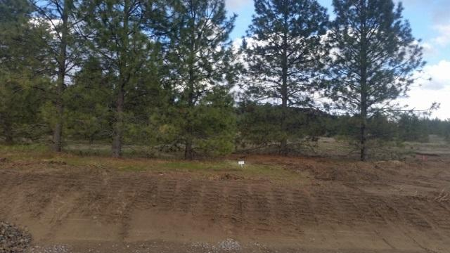 Lot 21 Westview Dr, Nine Mile Falls, WA 99026 (#201814806) :: The Synergy Group