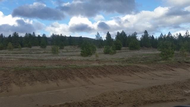 Lot 23 Westview Dr, Nine Mile Falls, WA 99026 (#201814808) :: The Synergy Group