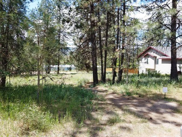 000 Palmer Ln, Tumtum, WA 99026 (#201818850) :: The Hardie Group