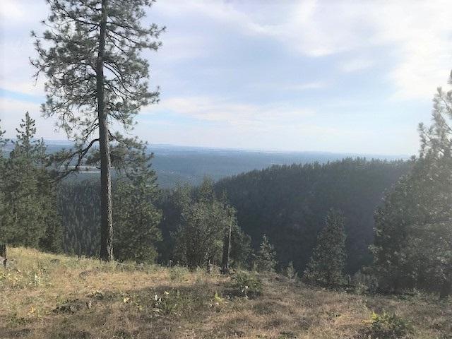 6717 W Lookout Mountain Ln, Spokane, WA 99208 (#201821094) :: The Synergy Group