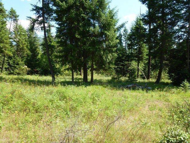 Lot 3 Riverbend Meadows, Cusick, WA 99119 (#201822584) :: Northwest Professional Real Estate