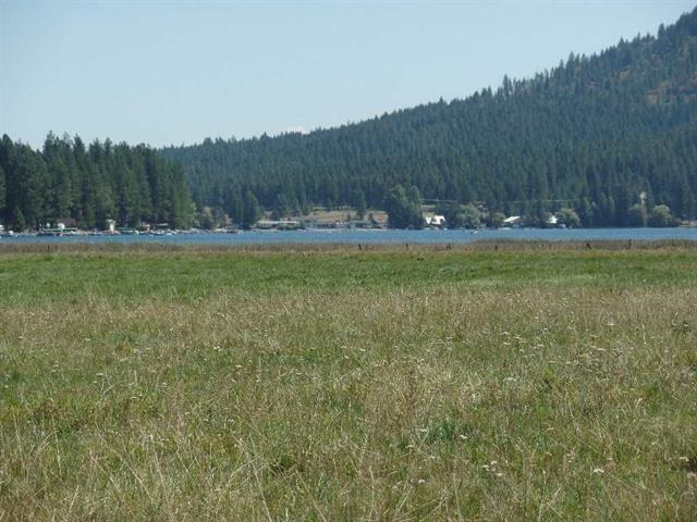 411XX Shore Acres Rd Lot B, Loon Lake, WA 99148 (#201824395) :: The Synergy Group