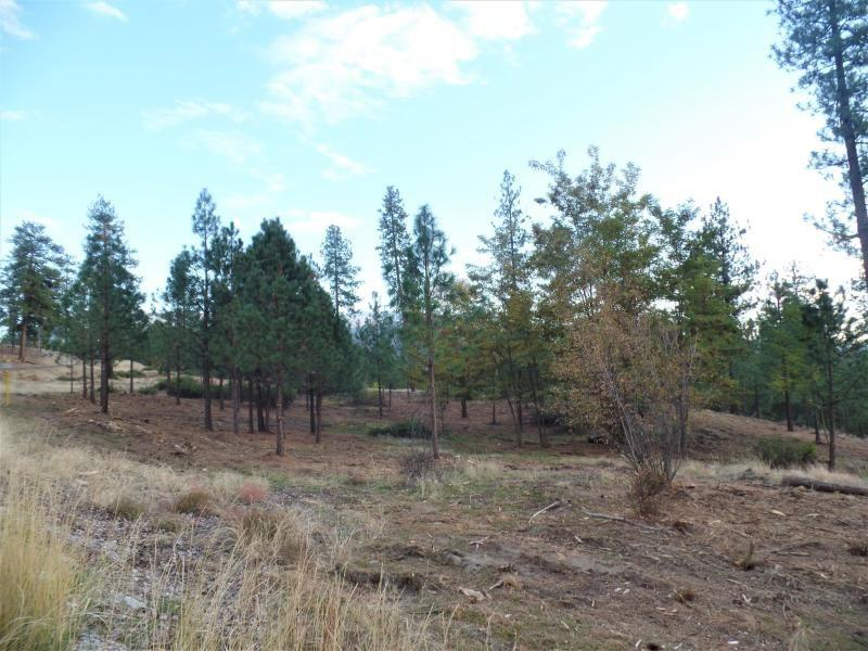 LOT 202 Old Kettle Rd - Photo 1