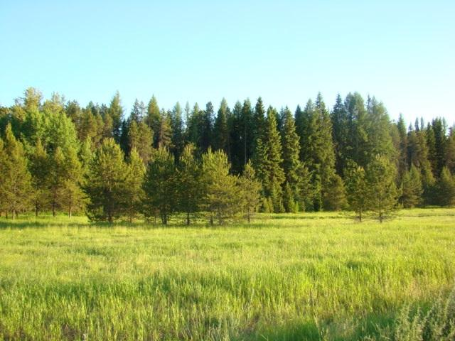 Lot D1 Solar Rd, Oldtown, ID 83822 (#201910378) :: 4 Degrees - Masters