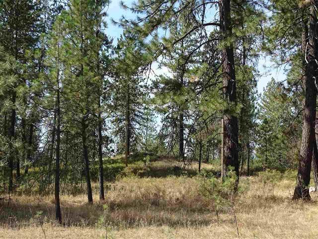 000 Bridges Rd P#49113.9026, Elk, WA 99009 (#201913767) :: Northwest Professional Real Estate