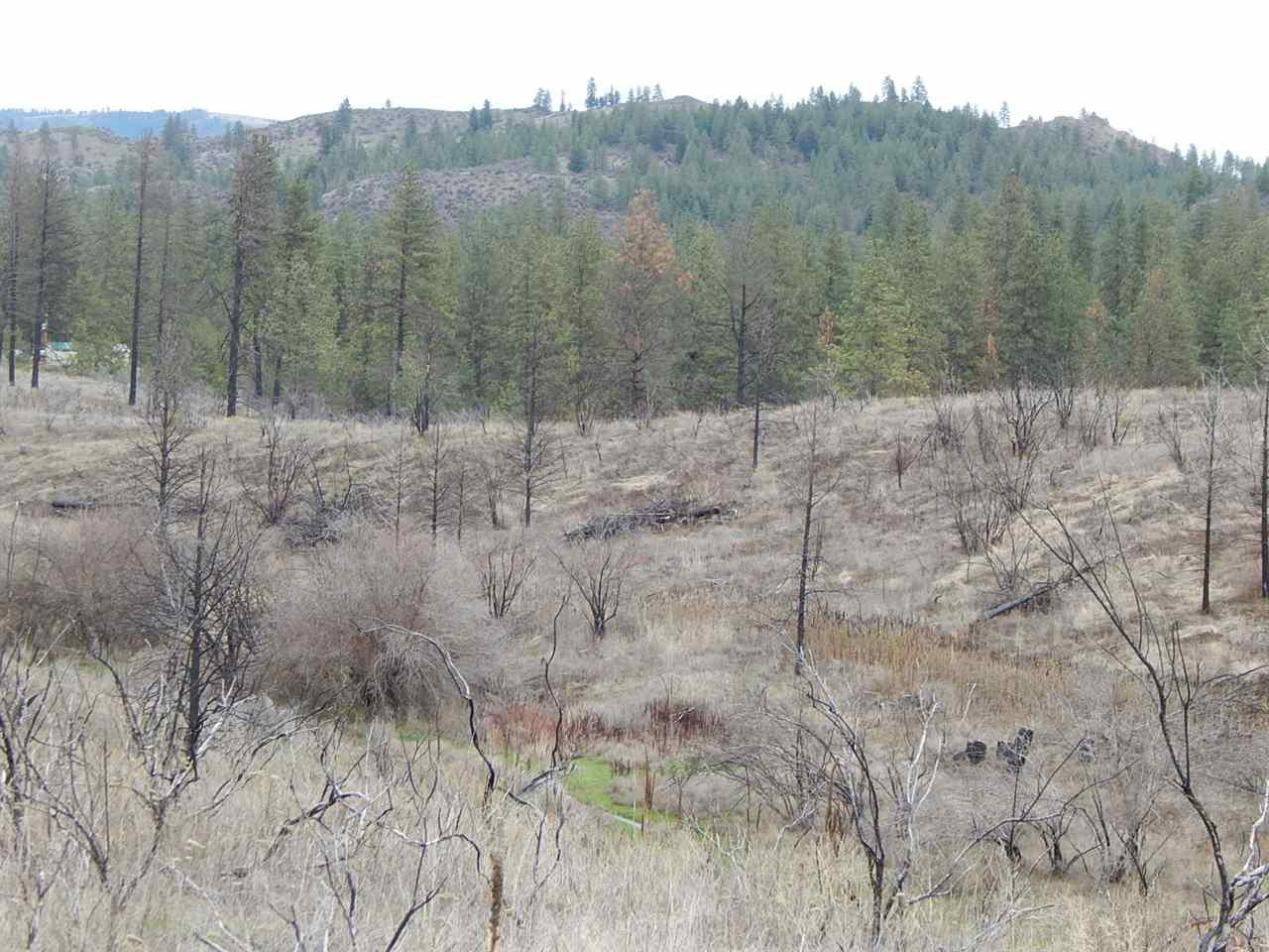 000 Lot F Coyote Ln - Photo 1