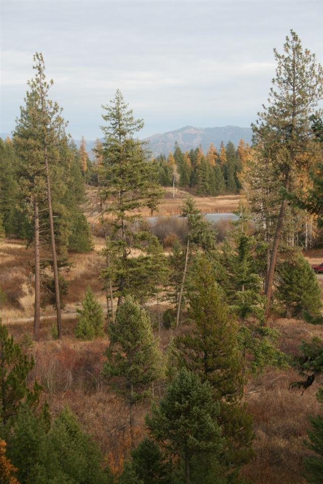 000 Little Sweden Rd Lot 1, Valley, WA 99181 (#201915595) :: Prime Real Estate Group