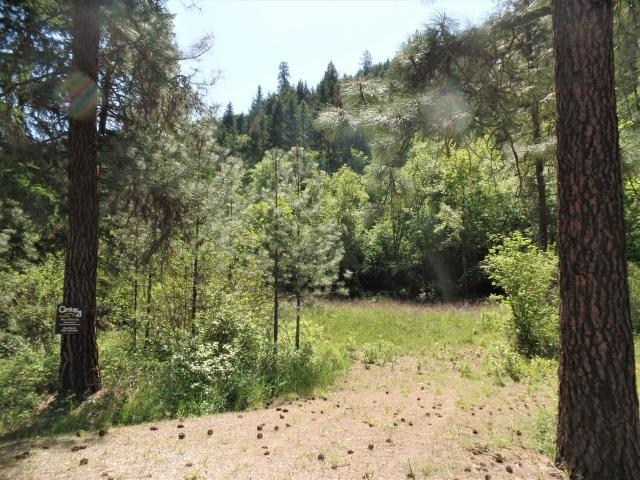 Lot #8 N Hwy 25, Marcus, WA 99151 (#201915972) :: The Synergy Group
