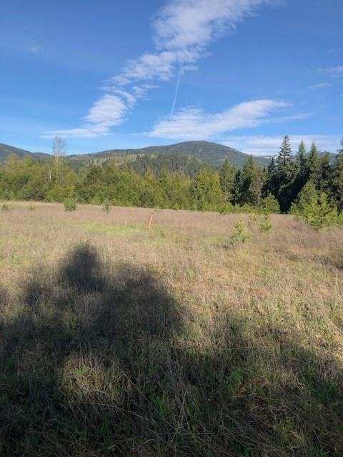 XXXX Box Canyon/Lehigh Hill Rd, Ione, WA 99139 (#201916964) :: The Hardie Group