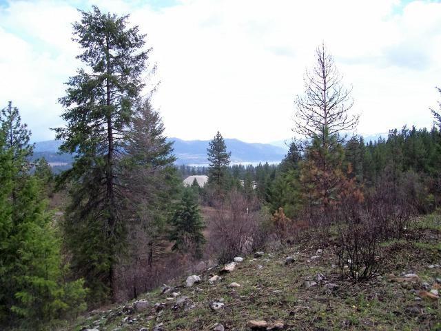 Tract 2 & 3 Cowboys & Angel Rd, Kettle Falls, WA 99141 (#201917424) :: The Spokane Home Guy Group