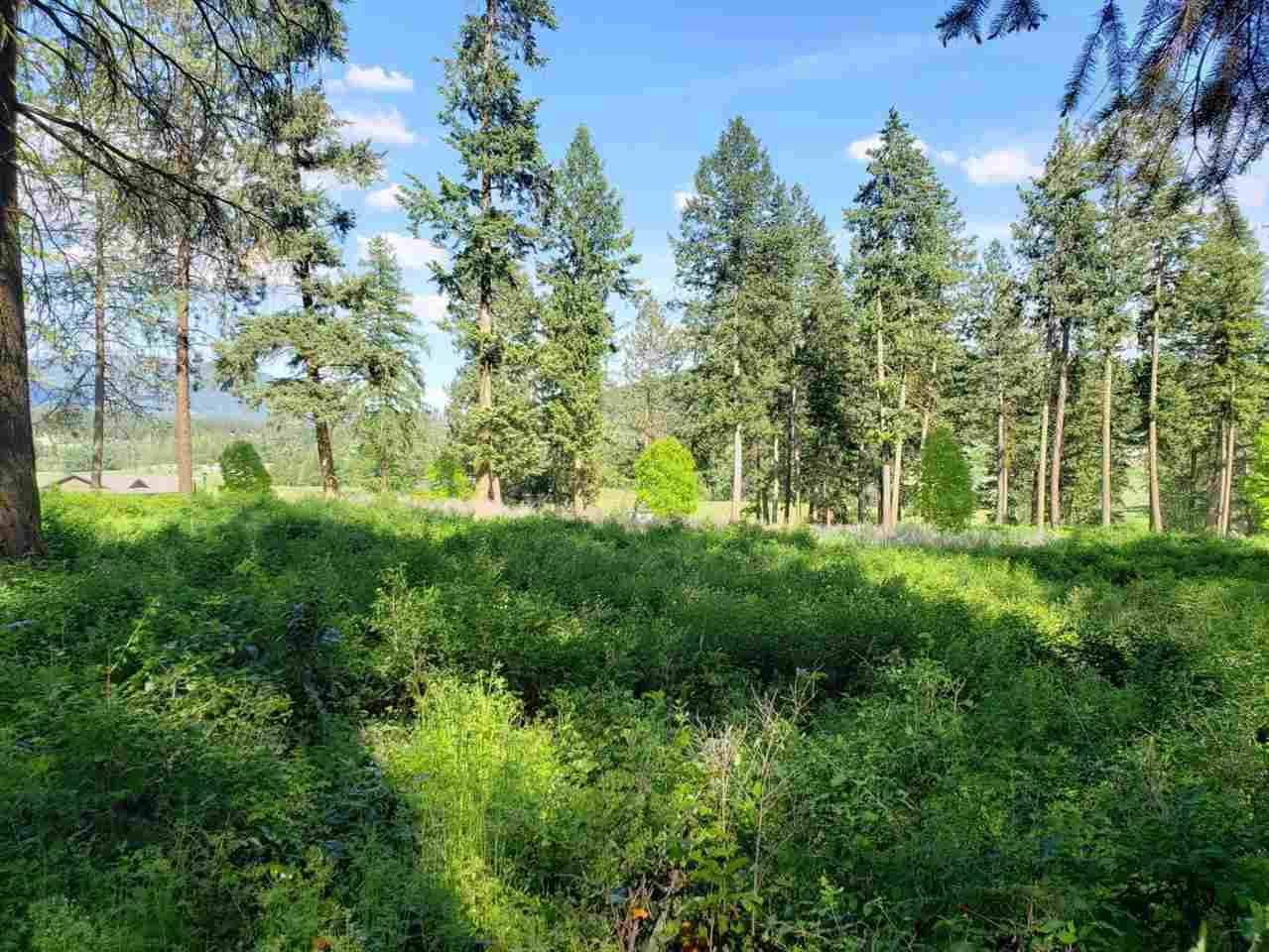 860 Evergreen Way - Photo 1