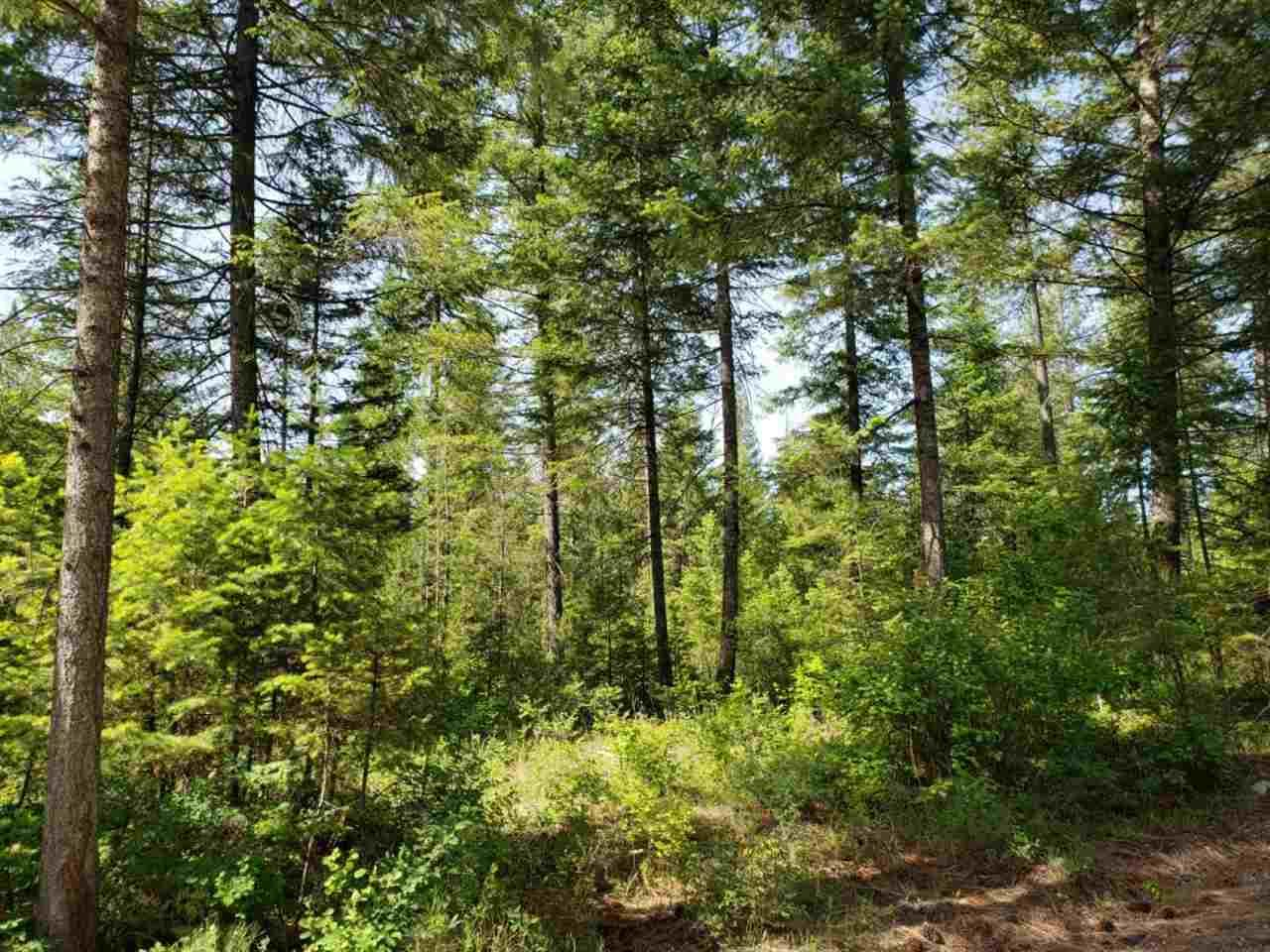 Grouse Creek Rd - Photo 1