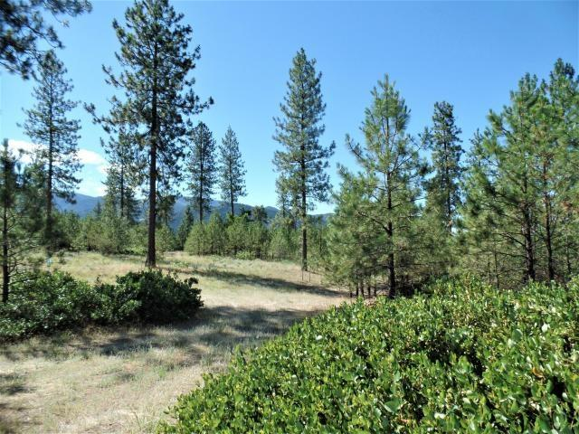 Lot 108 Old Kettle Rd, Kettle Falls, WA 99141 (#201920247) :: The Spokane Home Guy Group