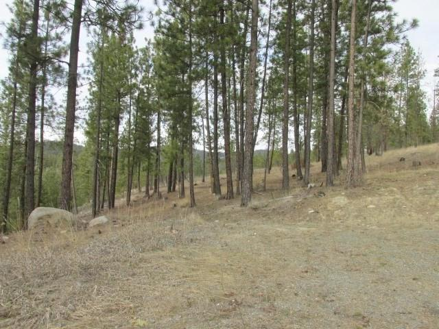 1021 Westover (30 Ac) Rd, Colville, WA 99114 (#201921807) :: Five Star Real Estate Group