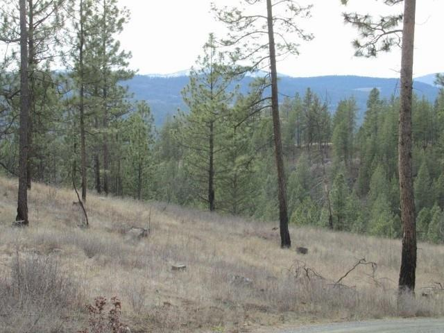 1021 Westover (20 Ac N) Rd, Colville, WA 99114 (#201921813) :: Five Star Real Estate Group