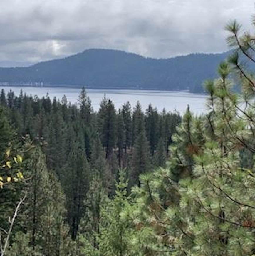 TBD Rocky Ridge Way - Photo 1
