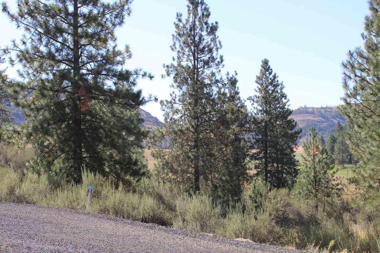 25756 Pine Cone Ct - Photo 1