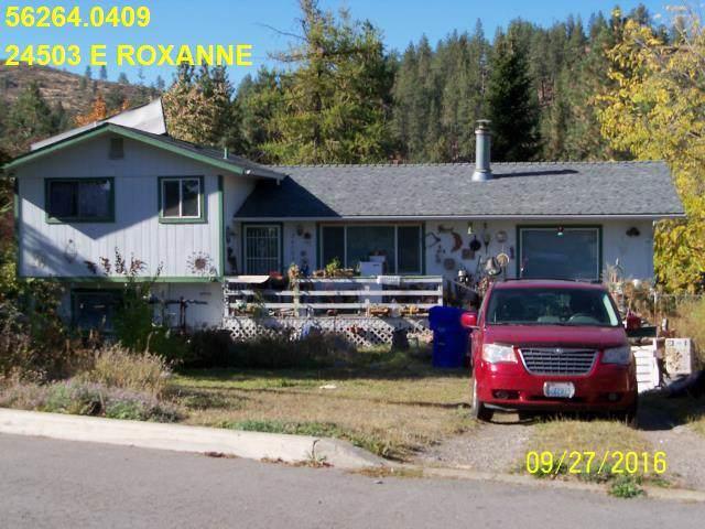 24503 E Roxanne Ave, Newman Lake, WA 99025 (#201925016) :: Top Agent Team