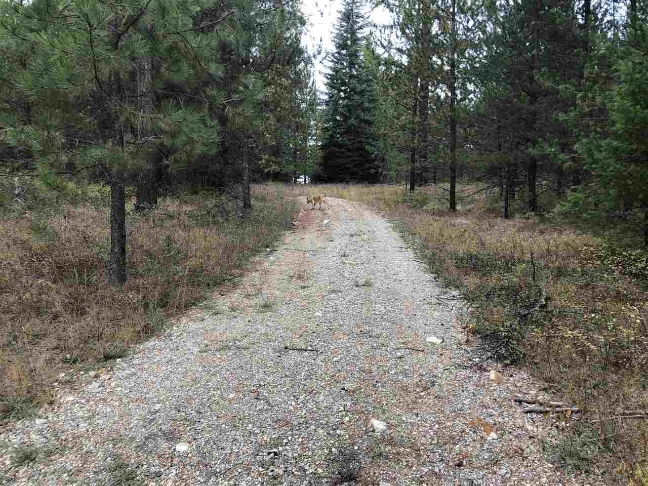 ID 16648 Deer Valley Rd - Photo 1