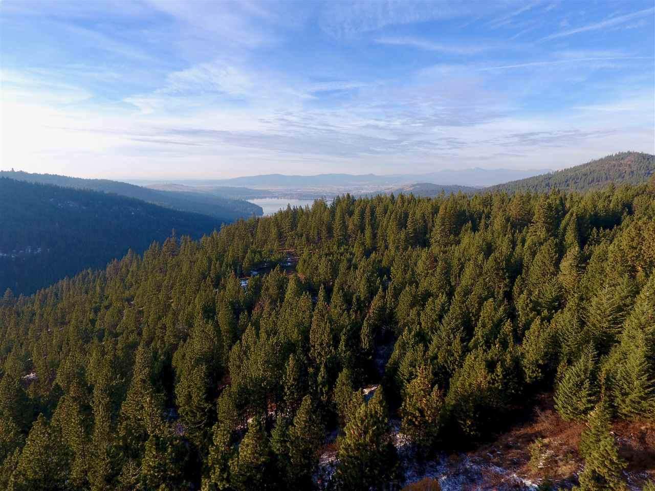 5001 Idaho Rd - Photo 1