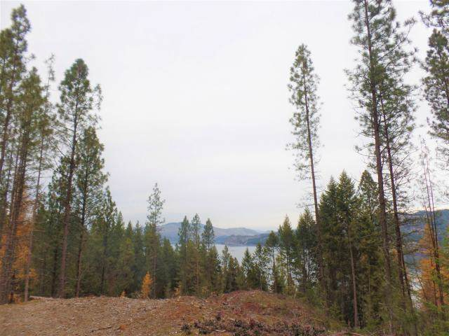 Lot 24 Fumi Cir, Kettle Falls, WA 99141 (#201926323) :: The Synergy Group