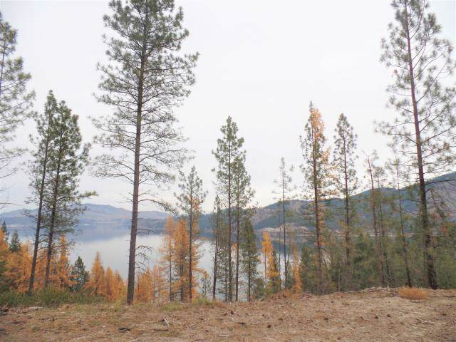 Lot 26 Pine Bluff Rd, Kettle Falls, WA 99141 (#201926397) :: Top Agent Team
