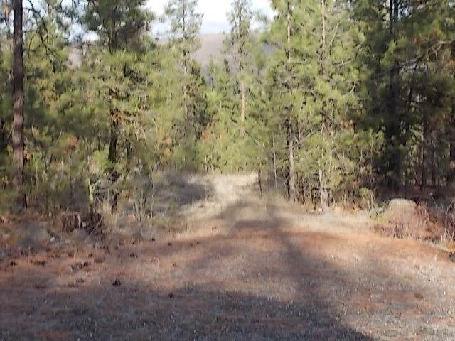 Lot 4 Top Notch Short Plat, Davenport, WA 99122 (#201926577) :: The Synergy Group