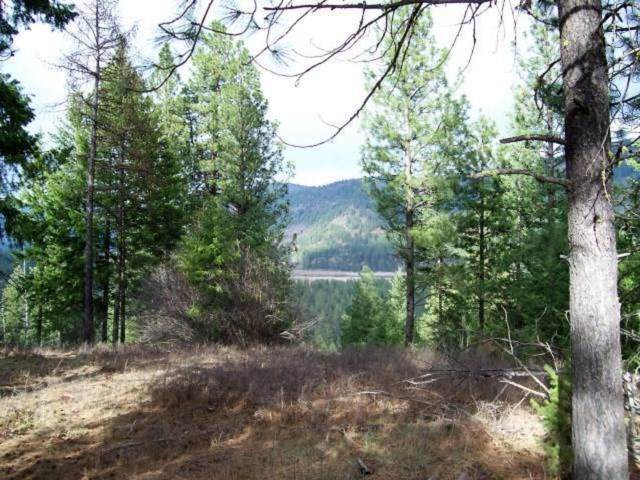 TBD Saddle Ridge Rd, Kettle Falls, WA 99141 (#201926841) :: The Hardie Group