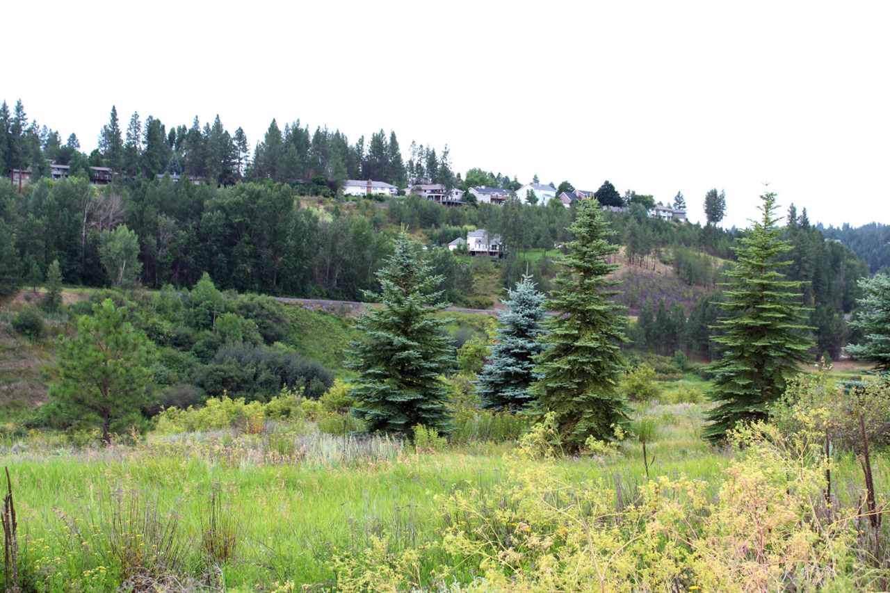 11323 Fairway Ridge Ln - Photo 1