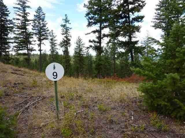 11418 S Elk Run Ln Lot 9, Blk 27, Spokane, WA 99224 (#202010383) :: Five Star Real Estate Group